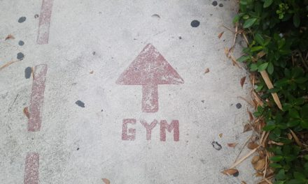 Gym Fun Facts: Types of Gym Goers